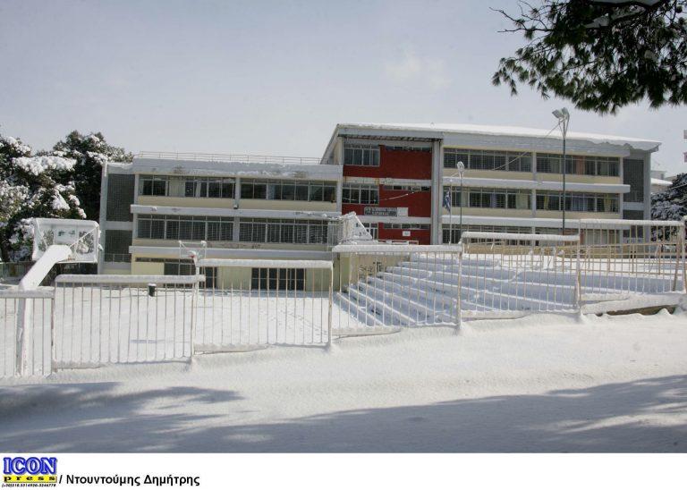 Ο παγετός έκλεισε σχολεία σε Κρήτη, Δυτική και Κεντρική Μακεδονία! | Newsit.gr