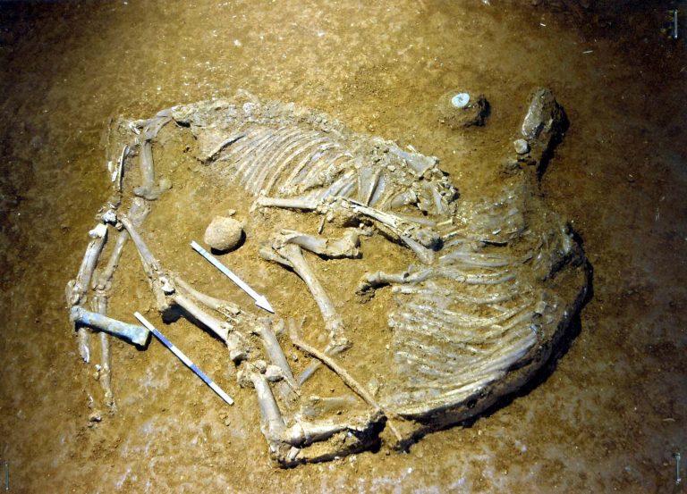 Γρεβενά: Ταυτοποιήθηκε ο σκελετός που βρήκε βοσκός σε δύσβατη περιοχή! | Newsit.gr