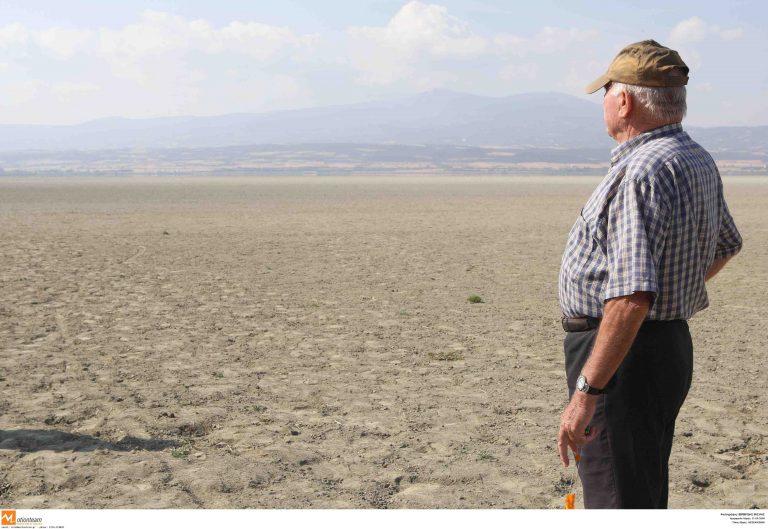 Θεσσαλονίκη: Ανέβηκαν οι τόνοι στη συζήτηση για τη λίμνη Κορωνεία! | Newsit.gr