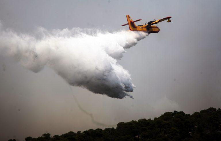 Φθιώτιδα: Υπό έλεγχο η φωτιά πάνω από το Λιανοκλάδι | Newsit.gr