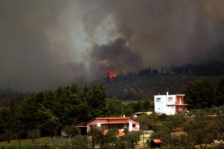 Υπό μερικό έλεγχο  η πυρκαγιά στη Χίο | Newsit.gr