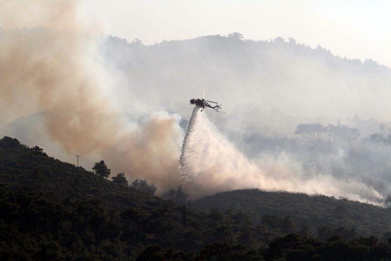 Σέρρες: Υπό έλεγχο η δασική πυρκαγιά | Newsit.gr