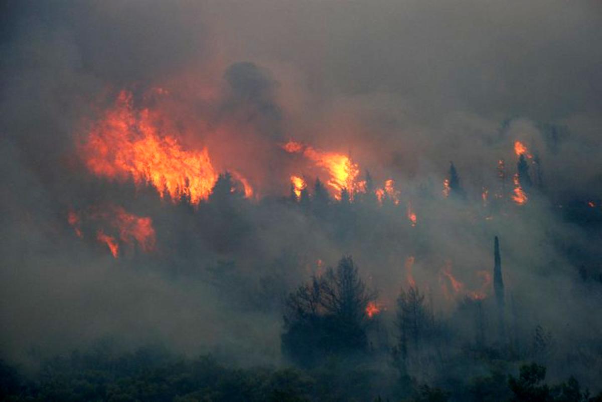 Ζάκυνθος: Υπό έλεγχο η φωτιά στις Βολιμές – Χειροπέδες στον εμπρηστή!   Newsit.gr