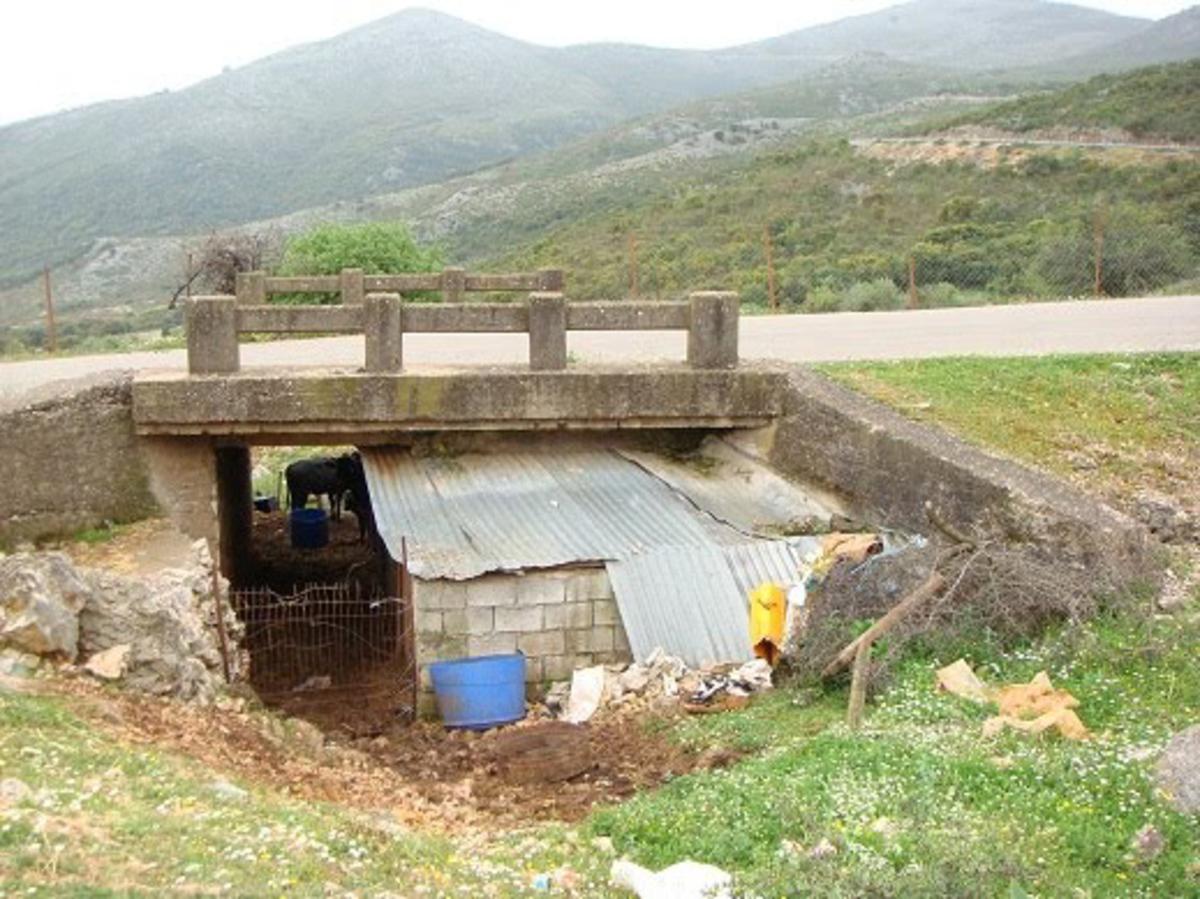 Κομοτηνή: Έσφαξαν και τεμάχισαν μοσχαράκι σε στάνη!   Newsit.gr