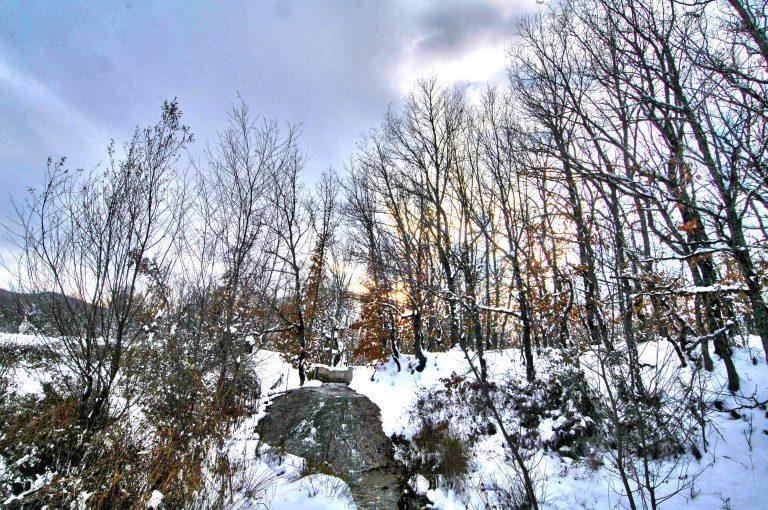 Χιονίζει από το απόγευμα στον Έβρο | Newsit.gr