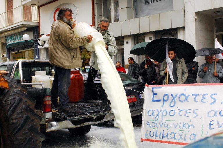 Σάμος: Κτηνοτρόφοι κατέλαβαν το κτίριο της Αντιπεριφέρειας! | Newsit.gr