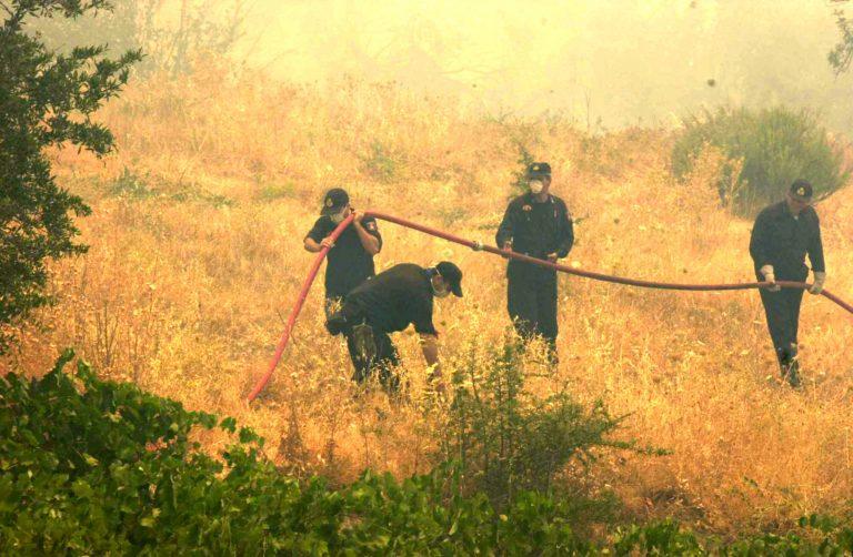 Σε ύφεση η φωτιά στην Κυπαρισσία | Newsit.gr