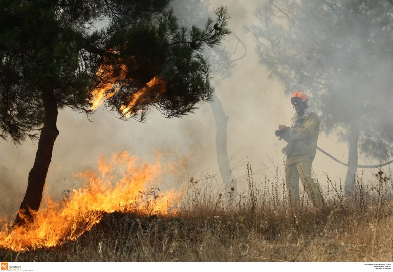 Μακεδονία: Σβήνει η μία, ανάβει η άλλη – Νέα πυρκαγιά στη Χαλκιδική!   Newsit.gr