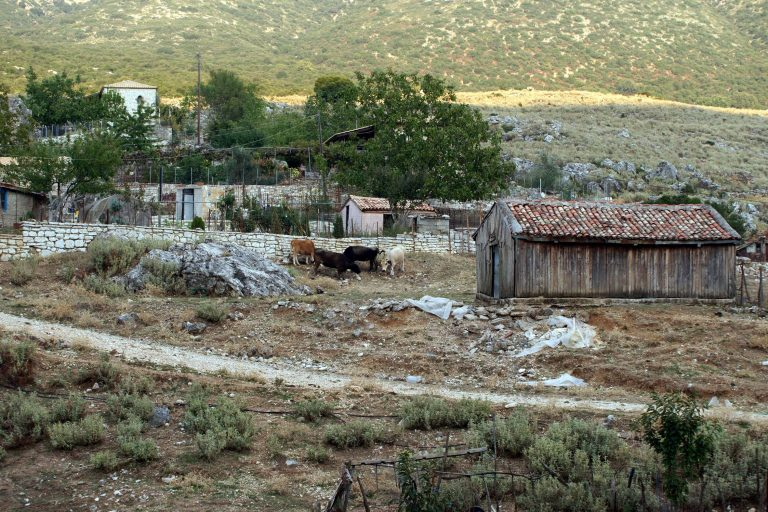Φθιώτιδα: Άνοιξαν την πόρτα της στάνης και βρήκαν το παιδί τους νεκρό! | Newsit.gr
