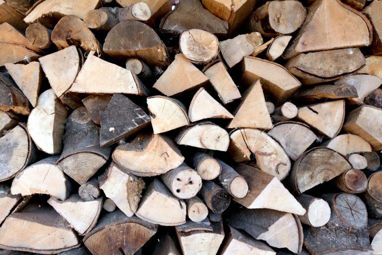 Σάμος: Ρυθμιστική διάταξη για τα καυσόξυλα – Από πού μπορούν να κόβουν οι κάτοικοι | Newsit.gr