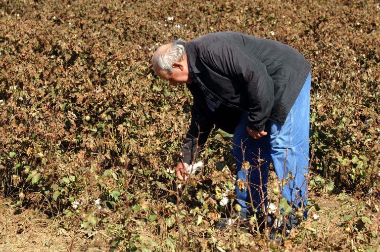 Ηλεία: Αγρότης σε πανικό – Το σκάψιμο τελείωσε απότομα! | Newsit.gr