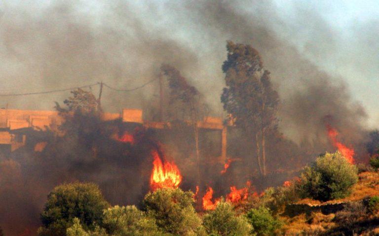 Αργολίδα: Έπιασαν 44χρονο για τη μεγάλη πυρκαγιά | Newsit.gr