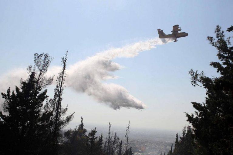 Ντόμινο πυρκαγιών στη Μαγνησία | Newsit.gr