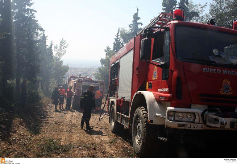 Κρήτη: Τρεις φωτιές στο Ηράκλειο – Σε ύφεση η πυρκαγιά του Ρεθύμνου | Newsit.gr