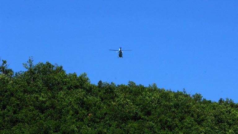 Θεσσαλία: Επιχείρηση με φορτηγά και ελικόπτερα για χασισόδεντρα-Δείτε φωτό! | Newsit.gr