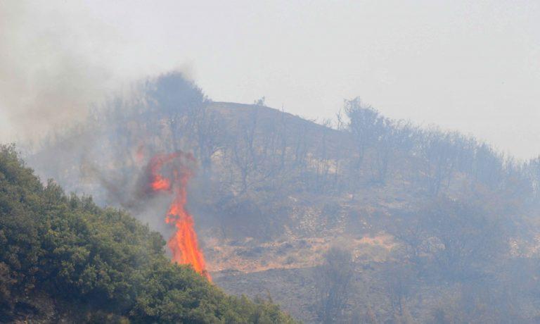 Πήλιο: Μαίνεται η πυρκαγιά σε ιδιαίτερα δύσβατη περιοχή! | Newsit.gr