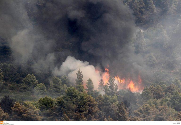 Πυρκαγιά στο Μαντούδι | Newsit.gr