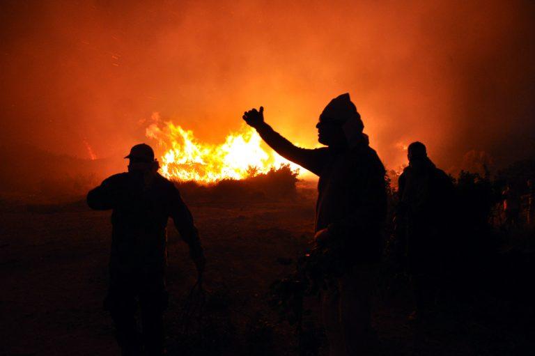 Χίος:Στον εισαγγελέα με καλυμμένο πρόσωπο ο… πικραμένος γιος του πυροσβέστη που έβαζε φωτιές! | Newsit.gr