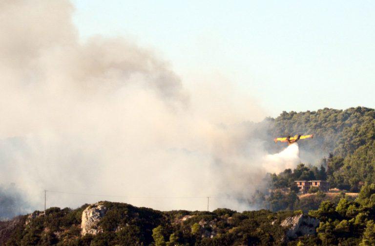 Ηράκλειο: Νέα φωτιά στην πολύπαθη Βιάννο-Μεγάλη η επιχείρηση κατάσβεσης!   Newsit.gr