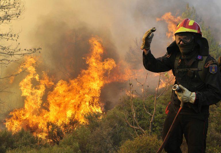 Εύβοια: Μεγάλη φωτιά έκαψε σπίτια και πλησιάζει το χωριό Πετριές! | Newsit.gr