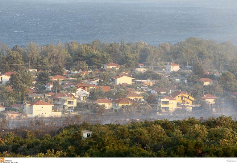 Θεσσαλονίκη:Η επόμενη μέρα της πυρκαγιάς – Καμμένα σπίτια, πεσμένα δέντρα και »ξεριζωμένες» τέντες!   Newsit.gr