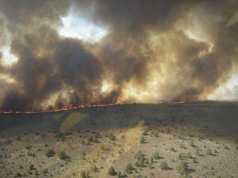 Καίγεται η Βόρεια Καλιφόρνια | Newsit.gr