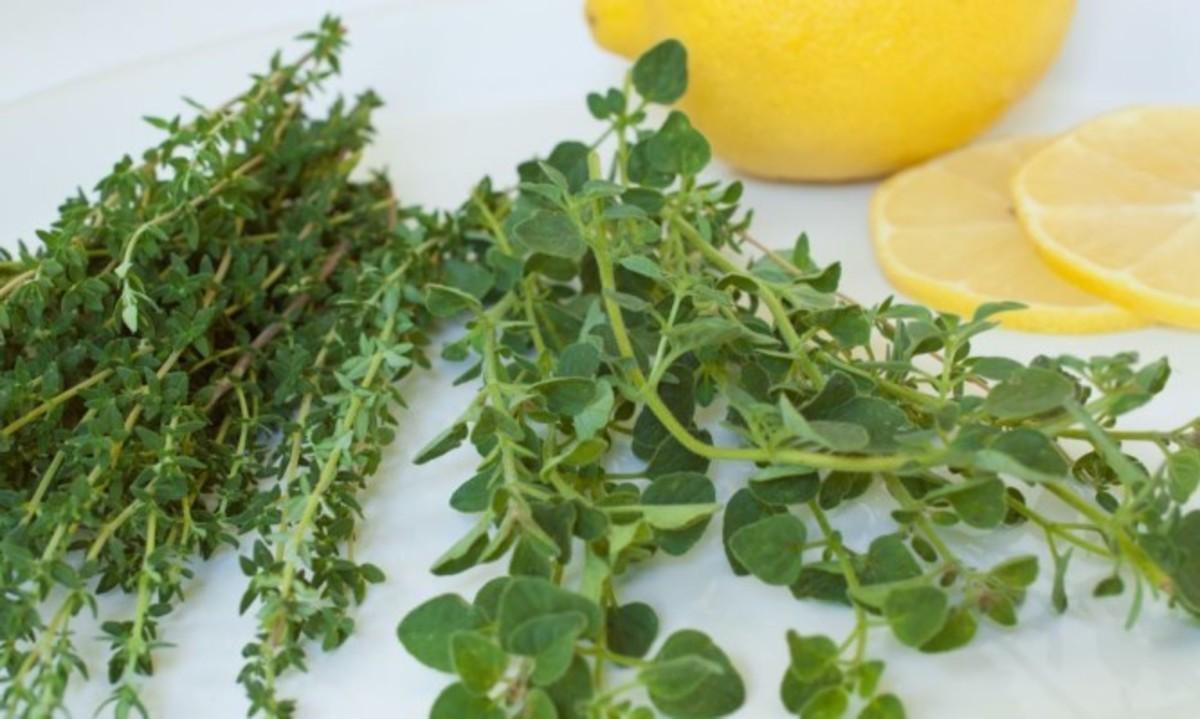 Ελληνικό βότανο προστατεύει από υπέρταση και καρκίνο του παχέος εντέρου! | Newsit.gr