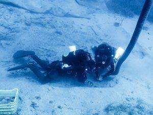 Κύθηρα: Ο βυθός έκρυβε νέες εκπλήξεις – Δείτε τις εικόνες με τα ευρήματα από το ναυάγιο του Μέντορα (Φωτό)!