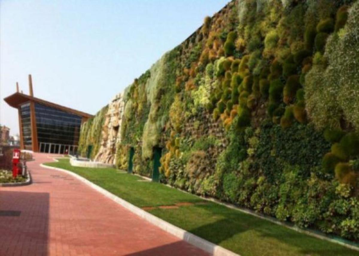 Αυτός είναι ο μεγαλύτερος κάθετος κήπος στον κόσμο! | Newsit.gr