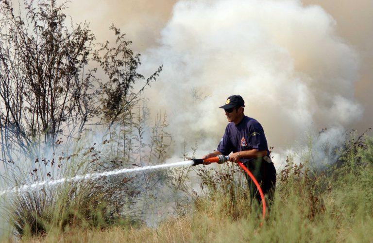 Πήλιο: Φωτιά σε δύσβατη αγροτική περιοχή στον Άγιο Γεώργιο | Newsit.gr