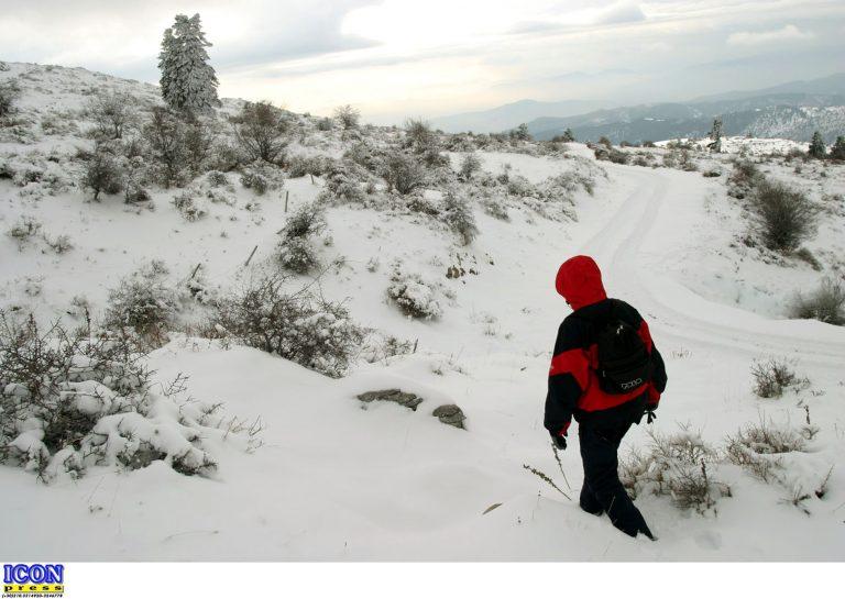Γιάννενα: Επιχείρηση σωτηρίας για ορειβάτη που έπεσε σε χαράδρα 400 μέτρων στο Πάπιγκο! | Newsit.gr