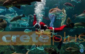 Ηράκλειο: Ο υποβρύχιος Άγιος Βασίλης που μαγεύει μικρούς και μεγάλους στο ενυδρείο – Φωτό και βίντεο!
