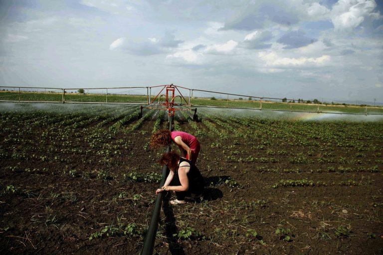 300.000 φεύγουν μετανάστες στο… χωριό – Αγρότες με καλλιέργειες που… τα σπάνε   Newsit.gr