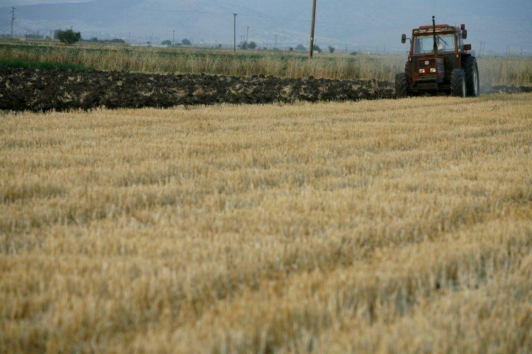 Αγρότες άποροι στην Ελλάδα, κροίσοι στο εξωτερικό – Τα «λαβράκια» που βρήκε το ΣΔΟΕ στη λίστα με τους 54.000 που τα «έφυγαν» | Newsit.gr