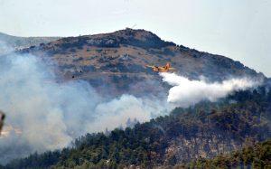 Φωτιά τώρα στην Άνδρο – Ισχυροί άνεμοι στην περιοχή