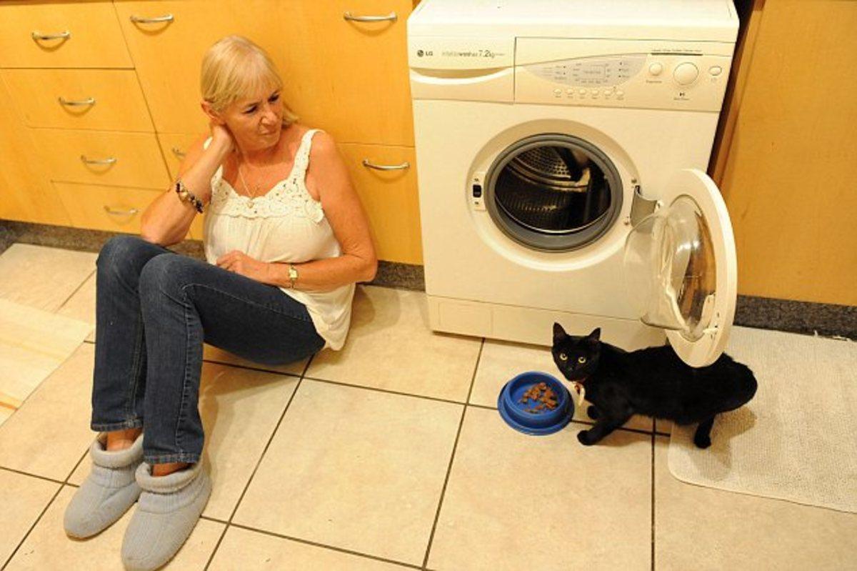 Έβαλε την γάτα στο πλυντήριο! | Newsit.gr
