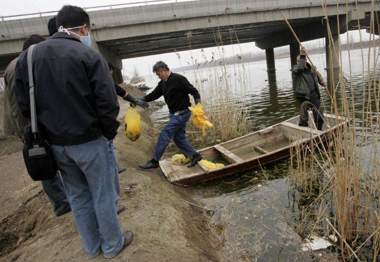 Έπιασαν τους δράστες που πέταγαν τα βρέφη στο ποτάμι | Newsit.gr