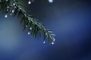 Καιρός: Μας τα… χαλάει την Κυριακή! Βροχές και πτώση της θερμοκρασίας