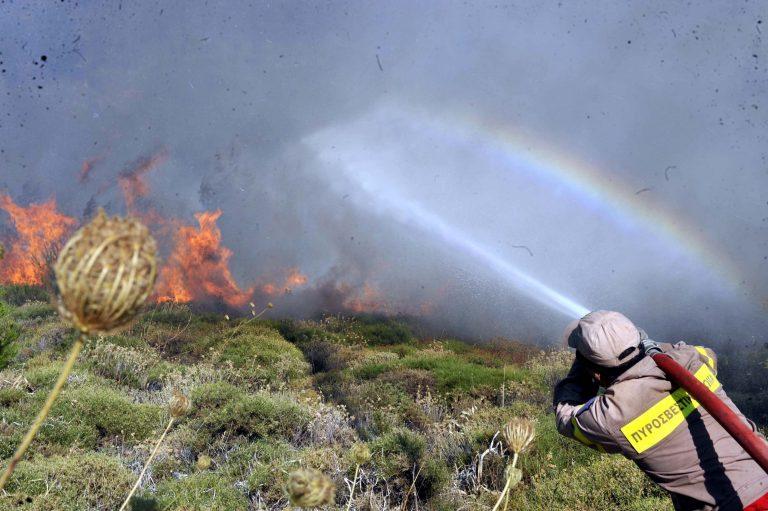 Μεσσηνία: Υπό μερικό έλεγχο η δασική φωτιά!   Newsit.gr