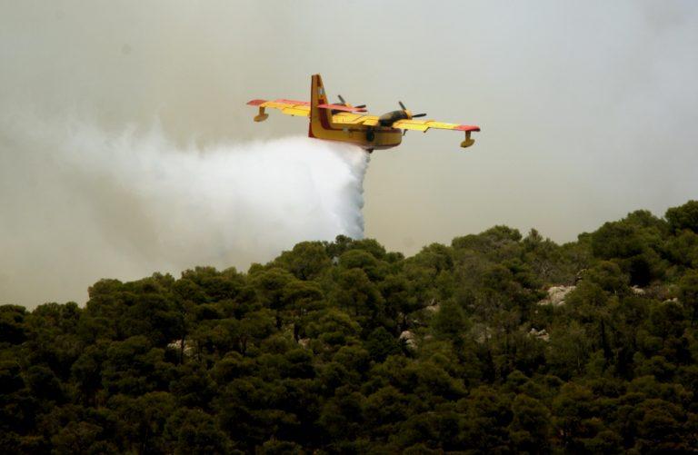 Χαλκιδική: Υπό μερικό έλεγχο η φωτιά στον Μαρμαρά   Newsit.gr