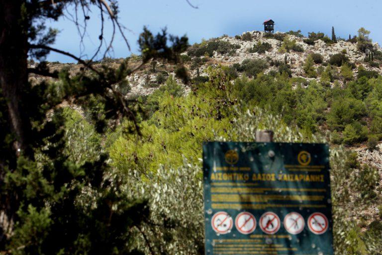 Δείτε ποιες εκτάσεις είναι δασικές και ποιες όχι στην περιοχή σας – Αναρτώνται οι χάρτες   Newsit.gr