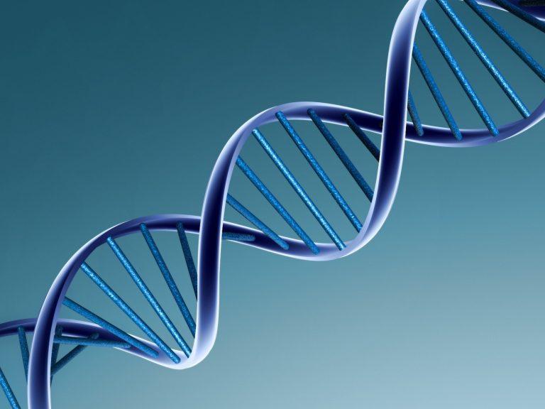 Σπουδαία ανακάλυψη Ελλήνων επιστημόνων για το DNA | Newsit.gr