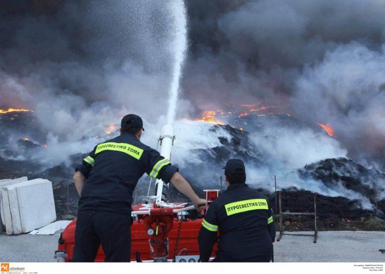 Διοξίνες απειλούν το γάλα από την Δράμα – Μια μεγάλη πυρκαγιά απειλεί με καραντίνα τον γαλακτοπαραγωγικό νομό | Newsit.gr