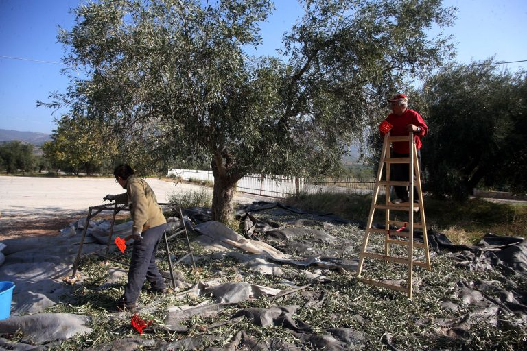 WSJ: Οι Έλληνες πολίτες επιστρέφουν στην επαρχία | Newsit.gr
