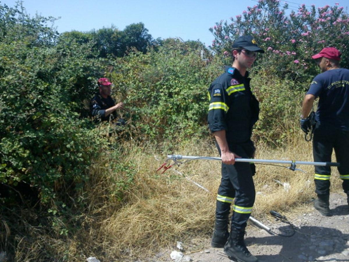 Φθιώτιδα: Επιχείρηση της ΕΜΑΚ για μυστηριώδες ερπετό! ΦΩΤΟ | Newsit.gr