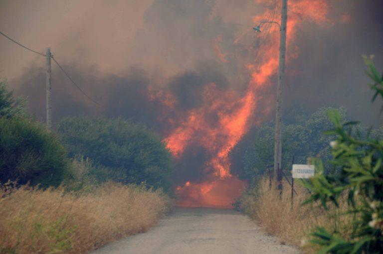 Να γιατί καίγεται η Αχαία 2 ημέρες-Συμβασιούχοι πυροσβέστες ξεκίνησαν να πάνε στην Πάτρα και τους γύρισαν πίσω γιατί δεν έχουν εγκριθεί τα εκτός έδρας | Newsit.gr