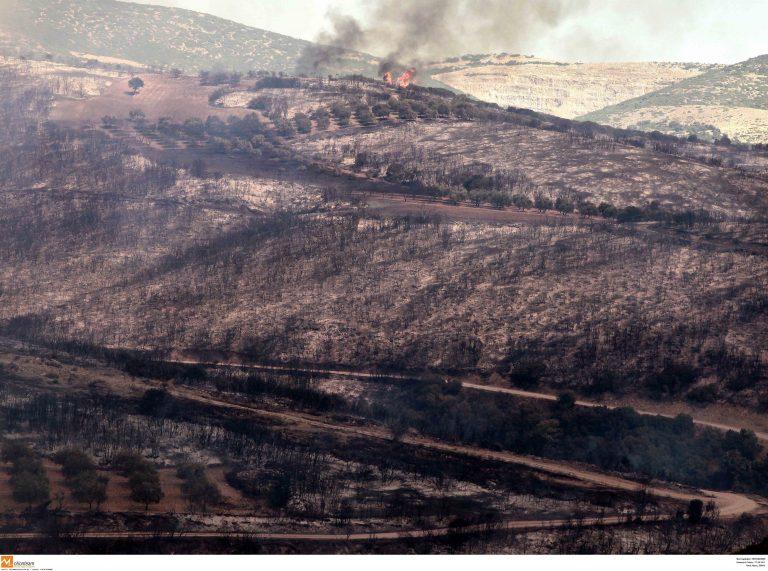 Φωτιές σε Αιτωλοακαρνανία, Κρήτη και Χίο – Κρανίου Τόπος στον Έβρο | Newsit.gr