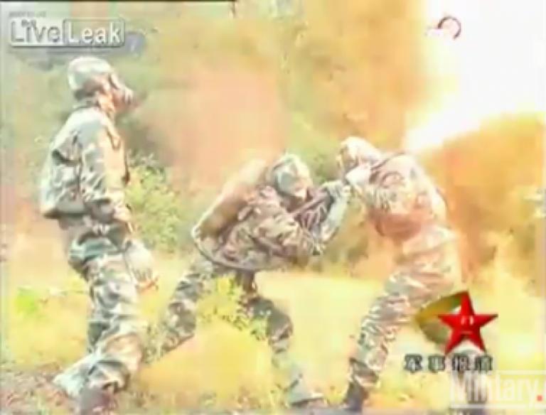 Κίνα: εξοντώνουν …σφήκες με φλογοβόλο! | Newsit.gr