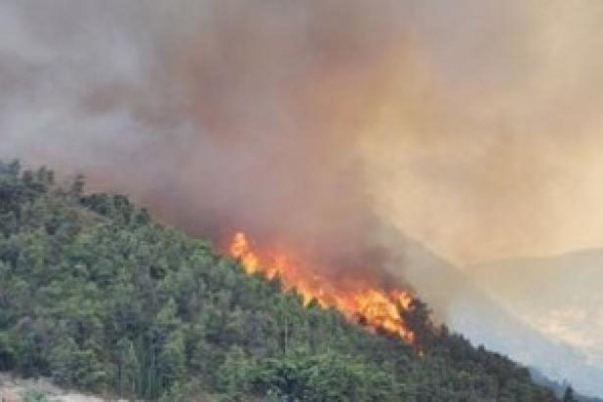 Φωτιά στην Αγία Τριάδα Θεσσαλονίκης- Απειλήθηκαν σπίτια – ΒΙΝΤΕΟ | Newsit.gr