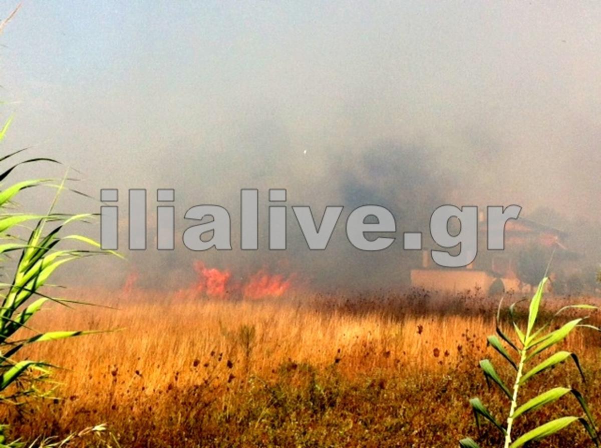 Ηλεία: Η φωτιά πέρασε από το στρατόπεδο της ΣΕΤΤΗΛ και κατευθύνται στην Ε.Ο. Πύργου-Κατακόλου – ΦΩΤΟ | Newsit.gr